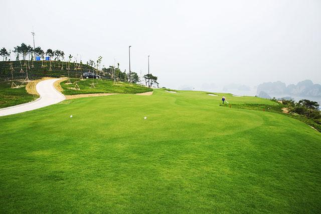 huong-dan-cac-buoc-choi-golf-co-ban-tu-a-den-z-anh-3