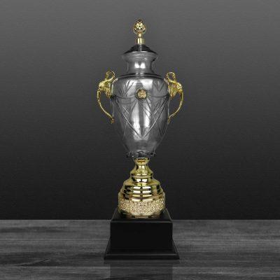 Cúp Nghệ Thuật - 91V501