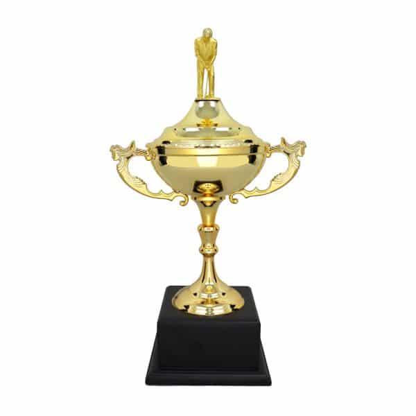 Cúp Nghệ Thuật - 91V605
